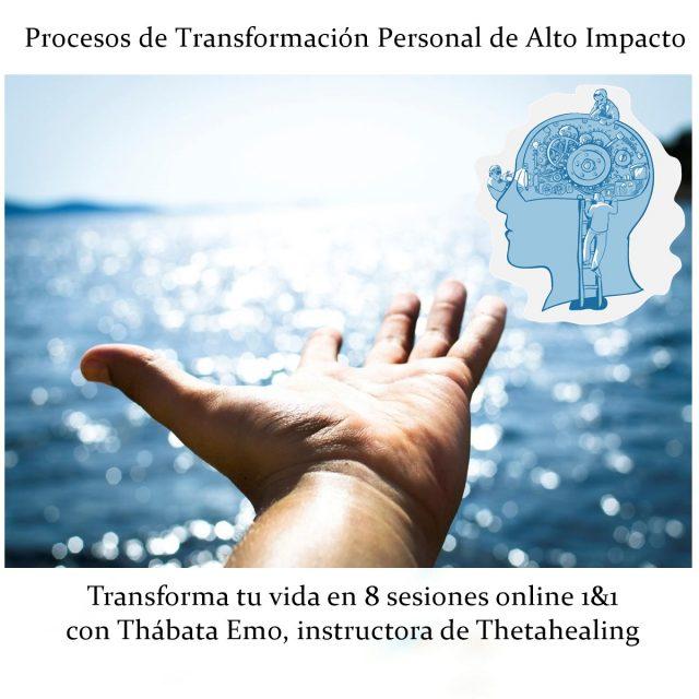 Procesos de transformación de Alto Impacto ( 8 sesiones individuales on line que transformarán tu vida)